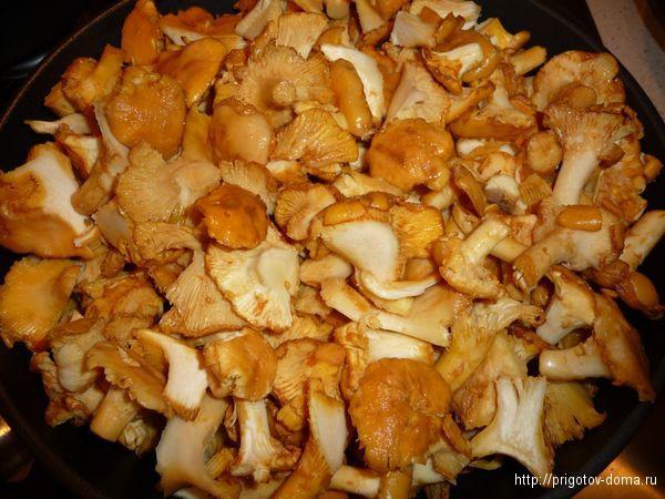 грибы моем , режем и жарим на медленном огне 20 минут