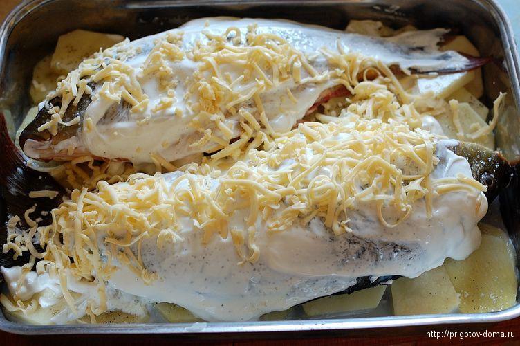 карпов смазываем сметаной и трем сыр