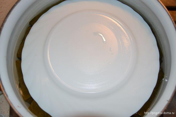 накрываем кастрюлю тарелкой и тушим долму в течении часа