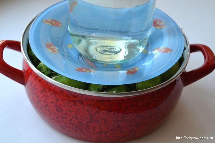 заливаем помидоры рассолом и кладем под груз